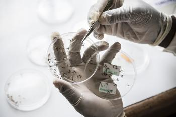 Malaria Initiative